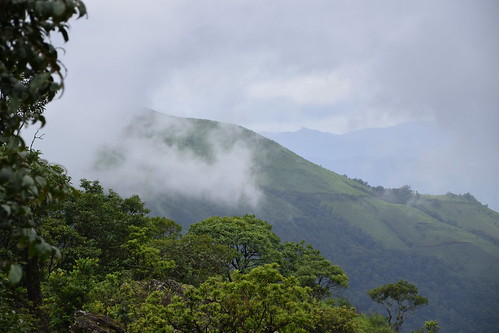 HILLS IN CHIKMAGALUR | by moon@footlooseforever.com