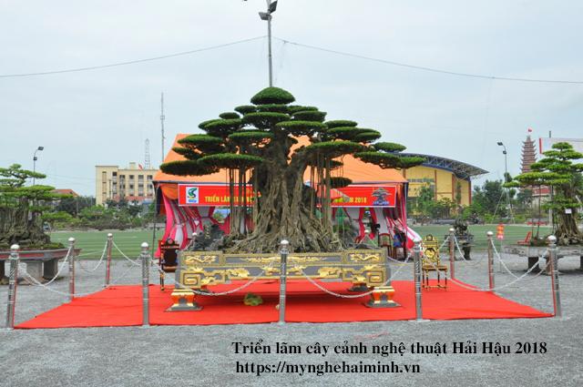 trien lam cay canh haihau CAY2018 04