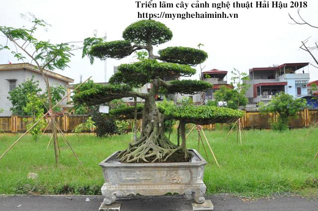 trien lam cay canh haihau CAY2018 15