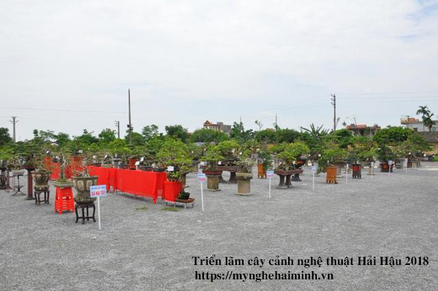 trien lam cay canh haihau CAY2018 07