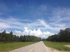 Biggish Sky