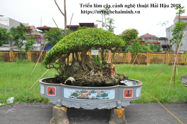 trien lam cay canh haihau CAY2018 12