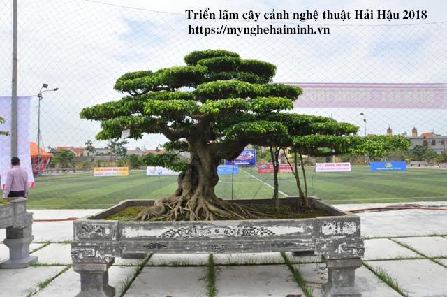 trien lam cay canh haihau CAY2018 16