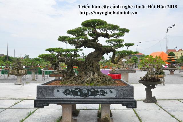 trien lam cay canh haihau CAY2018 10