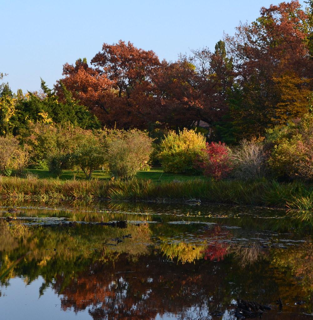 Herbst Farbenspiel Im Botanischen Garten In Berlin Flickr