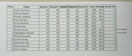 2018 Pro Division Final Scores | by Putting Penguin