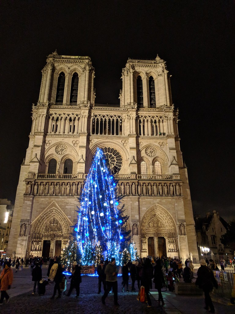 Christmas tree in front of Notre Dame | sporst | Flickr