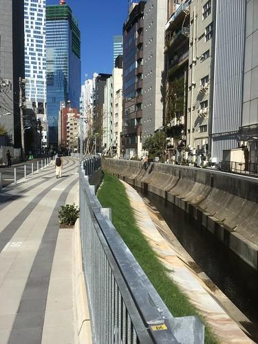 渋谷川の遊歩道