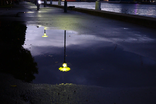 Street lights reflected | by aenigmatēs
