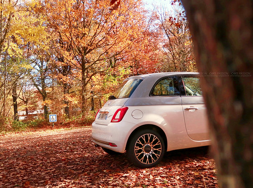 Fiat 500 Autumn | by dsgforever