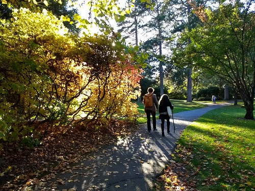Volunteer Park | by Seattle Parks & Recreation
