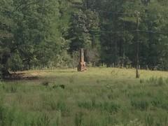Chimney at Hi-Lo Farms