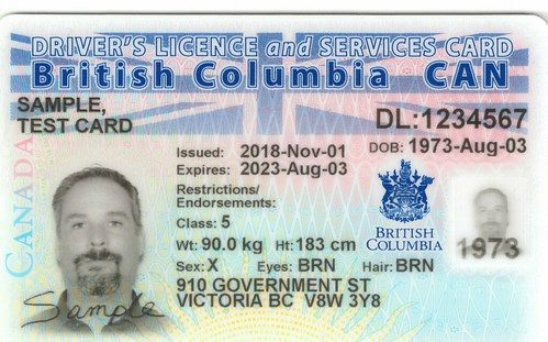 'X' gender identity now recognized on government ID | by BC Gov Photos