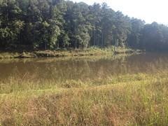 Lake on Silver Springs Road