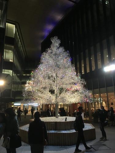 クリスマスツリー  東京ガーデンテラス紀尾井町 2018/11/14
