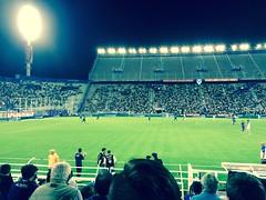 Stadio José Amalfitani