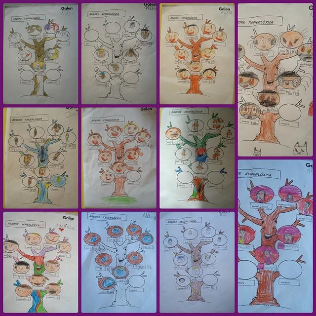 árbore xeneal 4