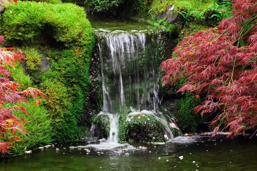 Waterfall in Japanese Garden The Garden had a beautiful