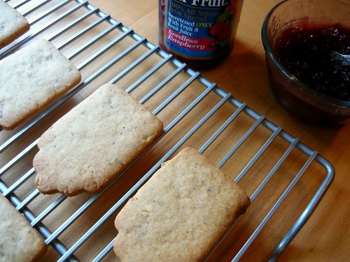 Raspberry & Nutella Linzer Cookies | by Buff Chickpea