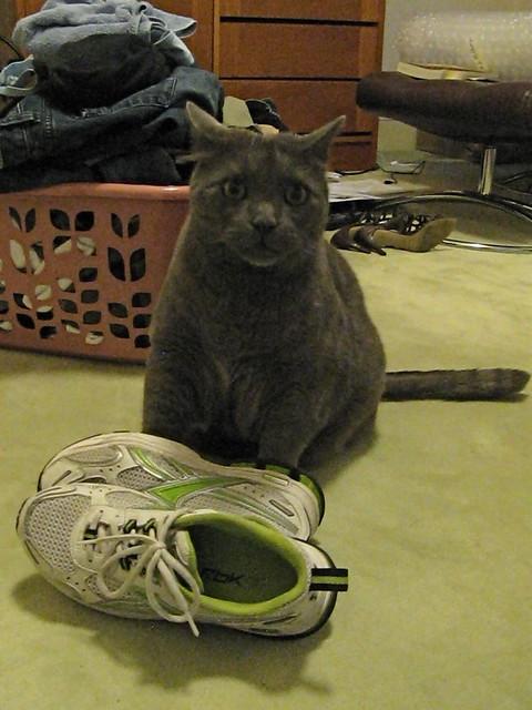 Grey Tennis Shoes Womens Nike
