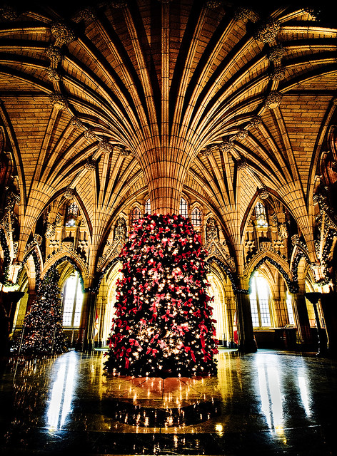 Where To Get A Christmas Tree