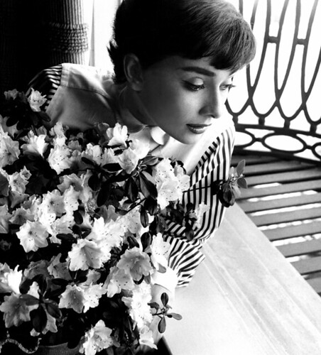 Audrey Hepburn in window with flowers, 1953 | by Bob Willoughby