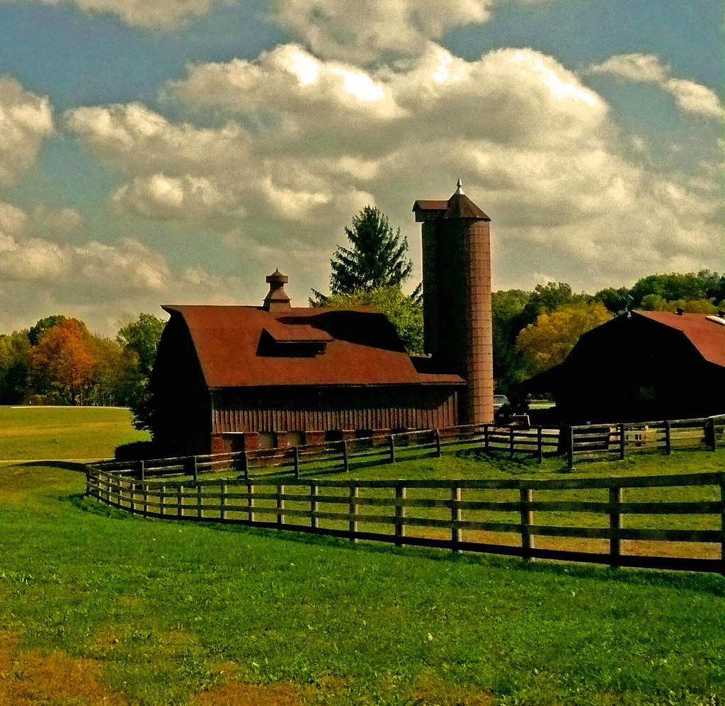 Horse Ranch Just North Of Indianapolis There Are Many