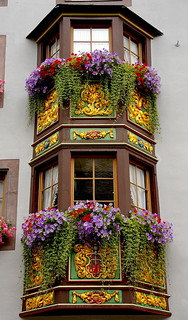 Flors i daurats / Flowers and gold | by SBA73