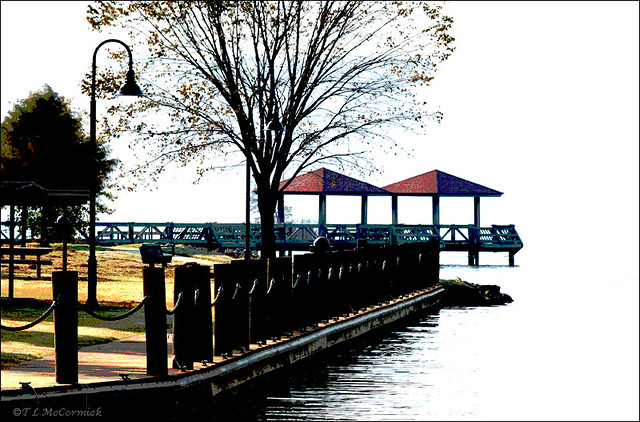 Boardwalk at lake dardanelle state park 7034a the new for Lake dardanelle fishing
