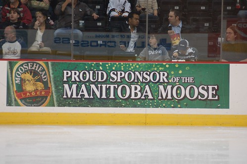 Manitoba Moose | by orclimber