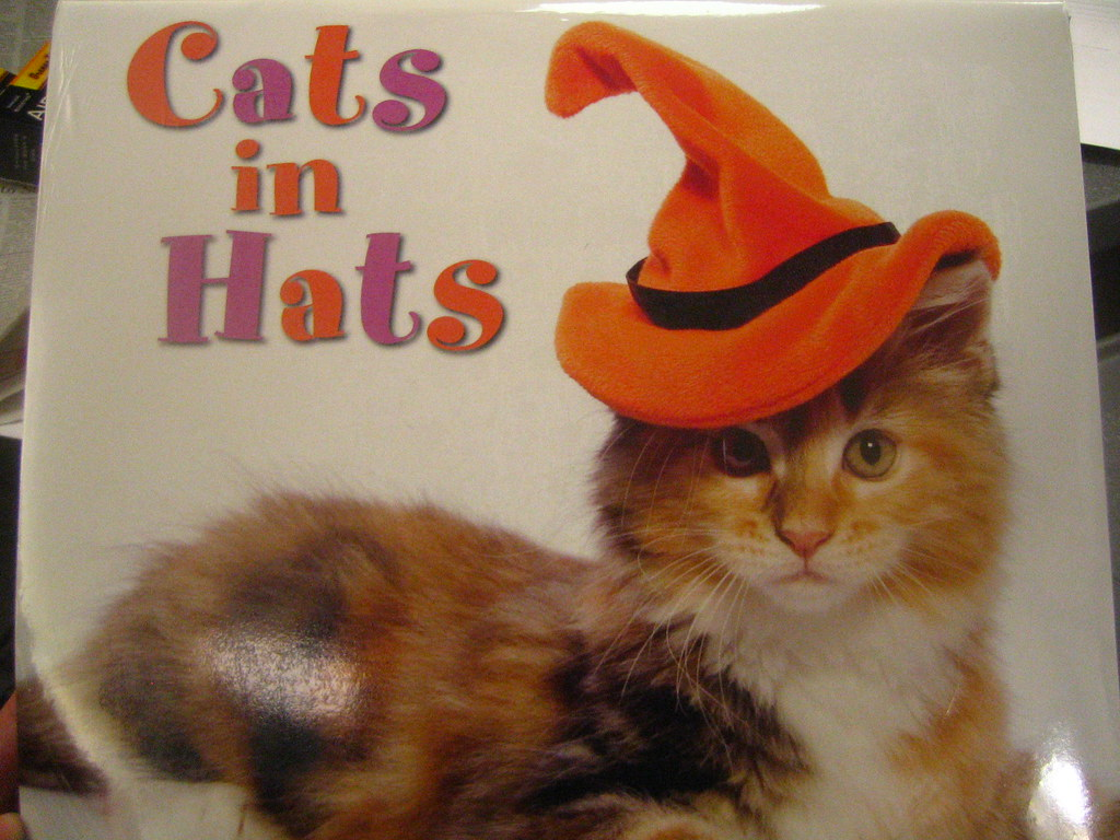 Cats Hats And Bats Download