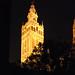 Sevilla. Nocturno de la Giralda desde el Patio de los Naranjos.