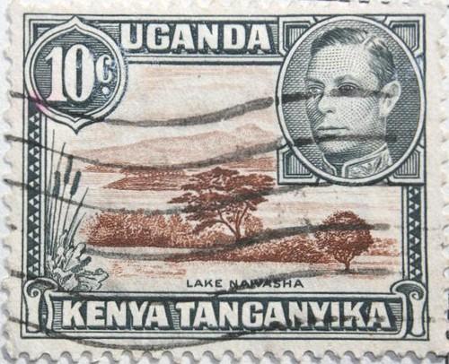 Tanganyika wildlife coupons