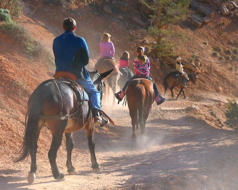 IMG_4474 Mule Ride