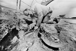 Colonial Archaeologist Noel Hume
