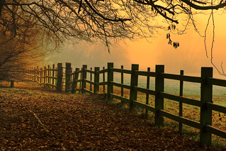 Misty Dawn at Caldicot Castle Country Park | by -terry-