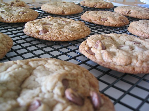 Big, Fat, Chewy Chocolate Chip Cookies | by NoshWithMe