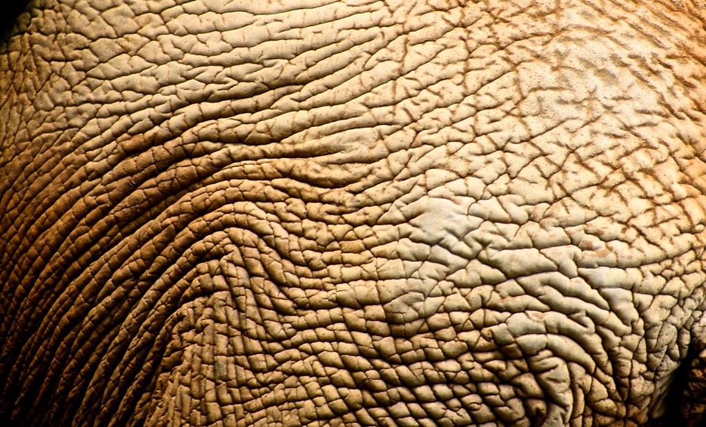 Drunk Elephant TLC Framboos Glycolic Night Serum  Skin
