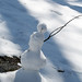 tiny one-armed snowman