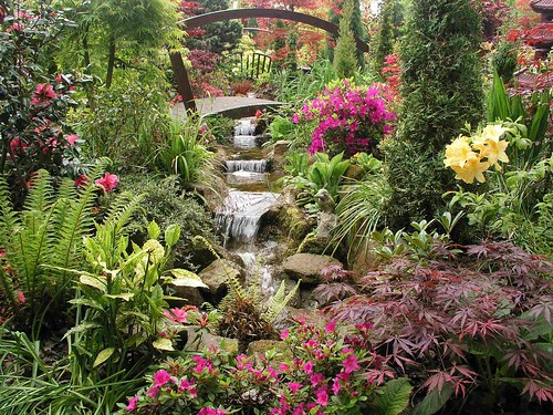 Lower stream may english garden for all seasons winner for Gardening 4 all seasons
