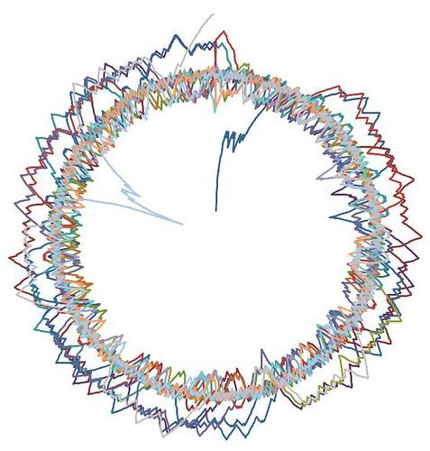 star burst polar graph