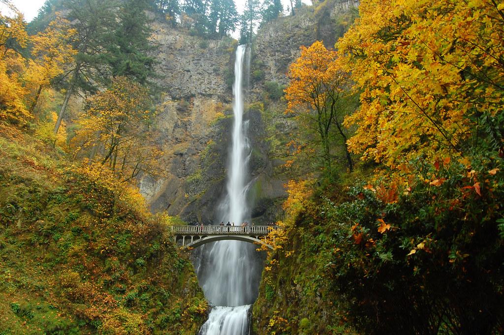 autumn at multnomah falls multnomah falls back to its