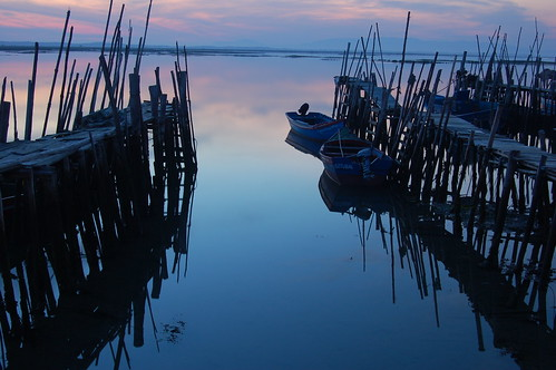 Carrasqueira | by BM®