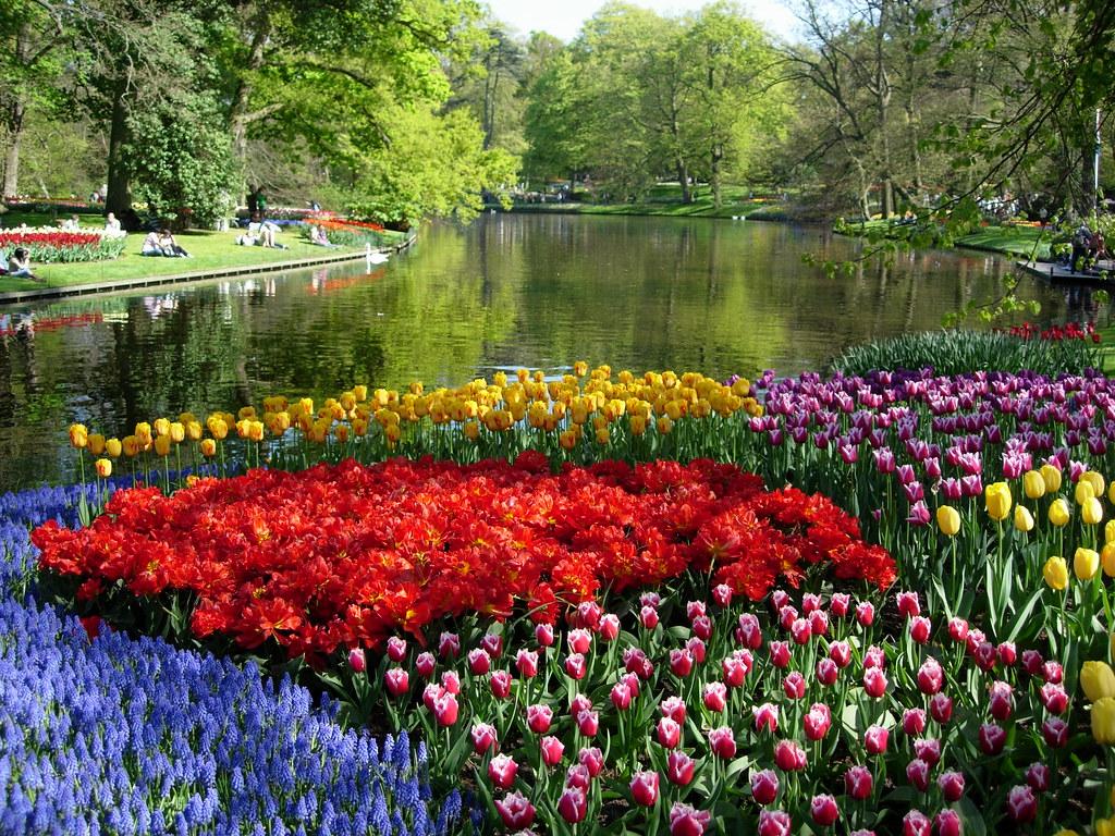 Parque de los tulipanes maria flickr - Jardines de holanda ...