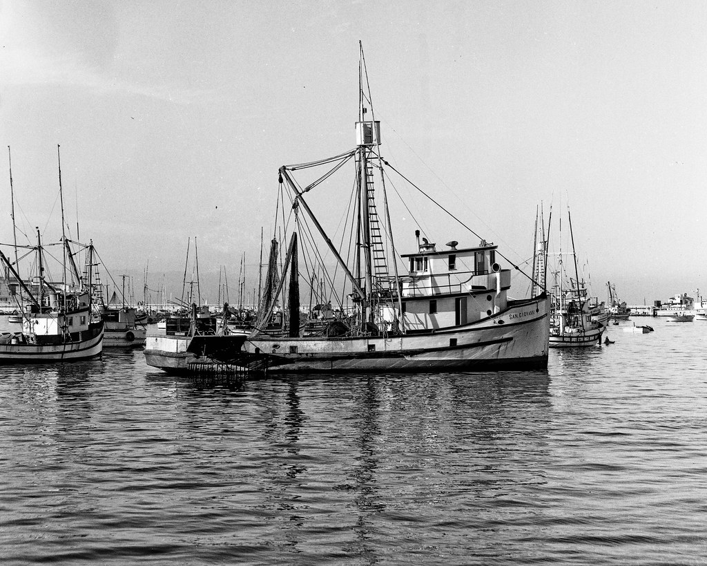 Monterey fishing boats on 30 dec 1962 commercial fishing for Monterey fishing report