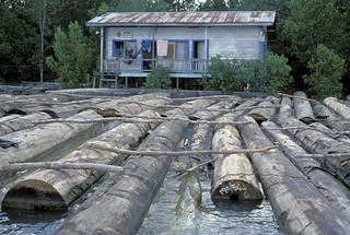 Lumber floating on water | by World Bank Photo Collection