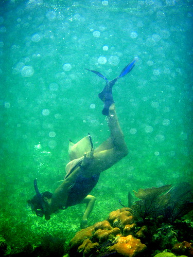 snorkeling belize reefs - Kat Cure Guide in Belize 2008 Oceanic Society | by mikebaird
