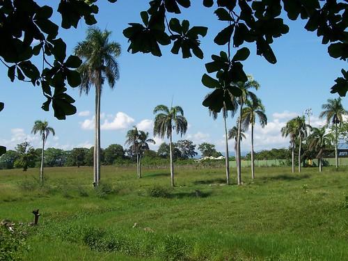 Fantino Cotui Dominican Republic Un Paisaje Desde
