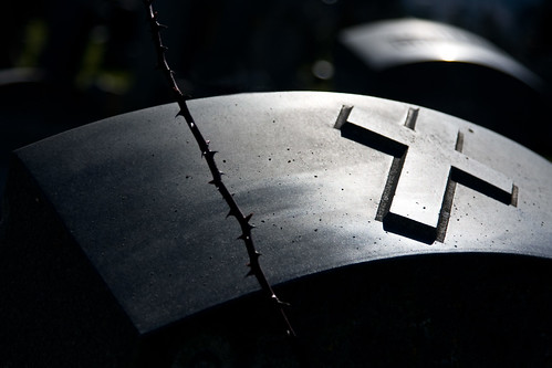 Thorny Cross (for Mr November) | by PJ Taylor Photo