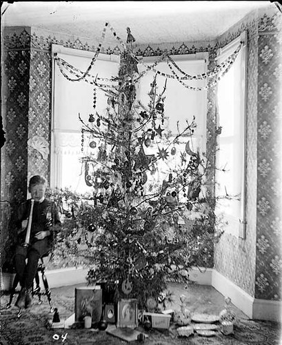 Christmas Tree 1904 This Image Is Marked 04 And The